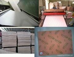 Shank board kinghope insole sheet