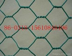 hexagonal  mesh