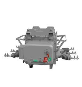 ZW20-12高压真空断路器 1