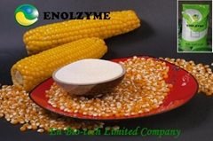 Chicken Feed Xylanase 10,000U/g