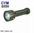 LED手電筒賣家銷售信息 1