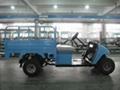 Electric Golf Mini Truck YMJ-T6