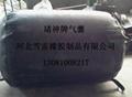 氣泵充氣式管道堵水氣囊