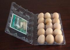PVC鸡蛋盒
