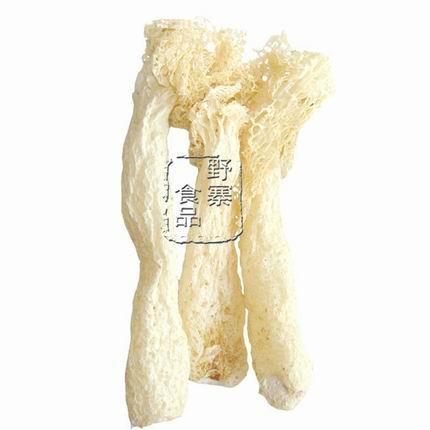 食用菌竹蓀  1