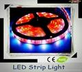 3528 Flexible led strip(60 LED/Metre) 12V waterproof 2