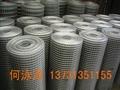 冷镀锌电焊网 2