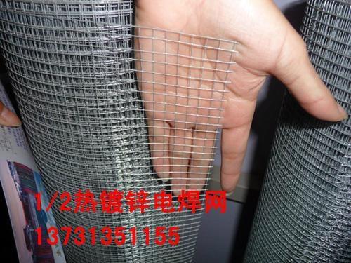 热镀锌电焊网 1