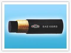 SAE100R5 Braided hose