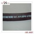 Steam Hose 2