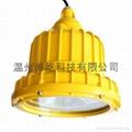 新款LED 防爆工作灯 1