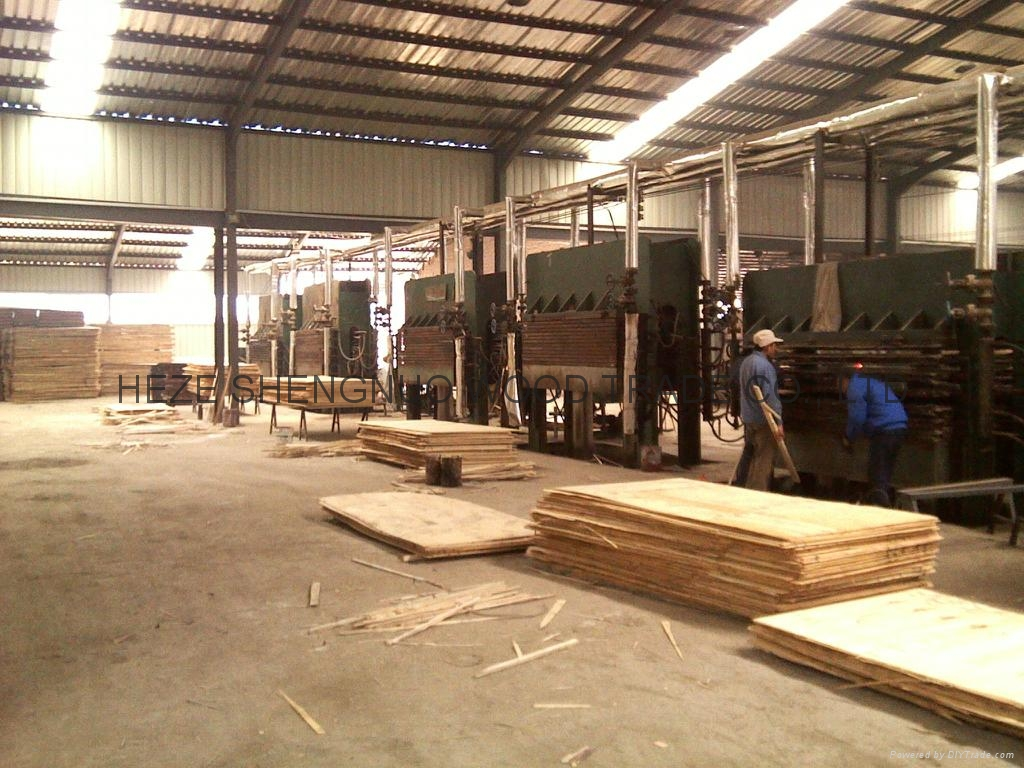 HEZE SHENGNUO WOOD TRADE CO., LTD (China Manufacturer ...