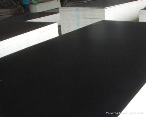 覆膜胶合板 3