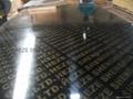高档建筑覆膜胶合板