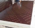 棕色建筑模板 3