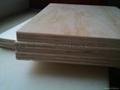 家具胶合板