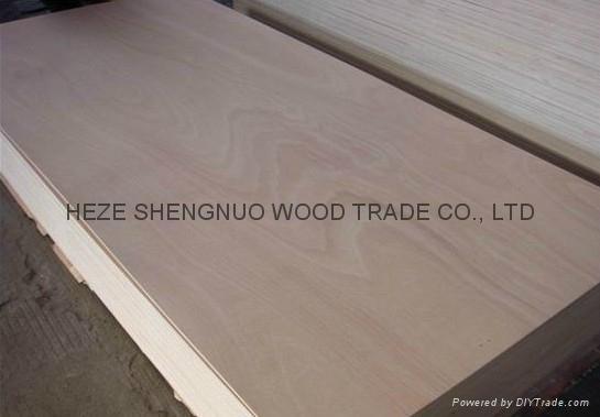 家具胶合板 3