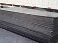 鑄型稀土含油尼龍襯板 3