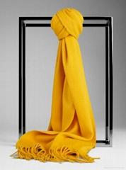 Fashion cashmere scarfs