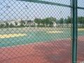 體育場隔離柵