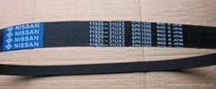 Ribbec PK belt