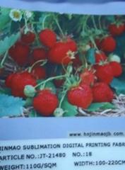 sublimation digital printing flag fabric