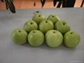 emreald pear