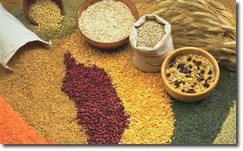 Caraway Seeds 1