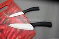 鲨鱼系列陶瓷刀套刀