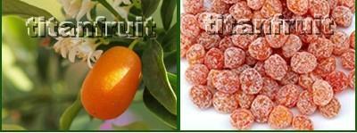 Dried Kumquats 4