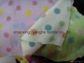 摇粒绒毯子 5