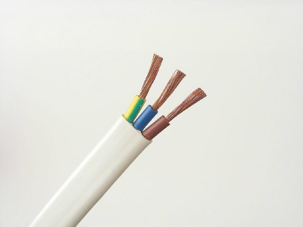 Must-Have Features Of Your Electrical Cable Suppliers