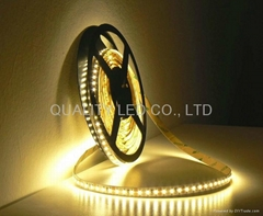 3528SMD LED Flexible Strip Light 5m/roll 24W