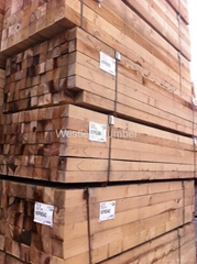 Canadian Softwood (SPF)