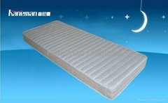 Kaneman Rolled Foam Mattress