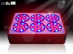 LED grow lights A6