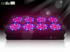 LED grow lights A8