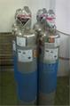 电子气体 1