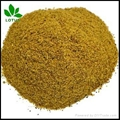 High protein Hydrolyzed feather meal FM for animal feed or organic fertilizer 1