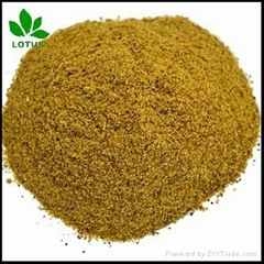 High protein Hydrolyzed feather meal FM for animal feed or organic fertilizer