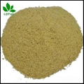 High protein Hydrolyzed feather meal FM for animal feed or organic fertilizer 2