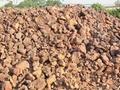 Rock Phosphate RPP For organic
