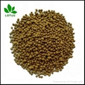 Seabird Guano Phosphate for organic