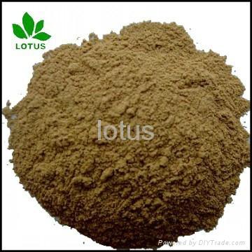 large supply Micronized Powder Of seabird Guano Manure for organic Fertilizer 1