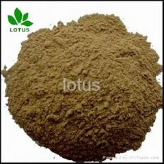 large supply Micronized Powder Of seabird Guano Manure for organic Fertilizer