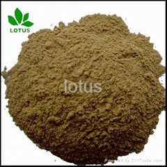 large supply Micronized Powder Of seabird Guano Manure for organic Fertilizer