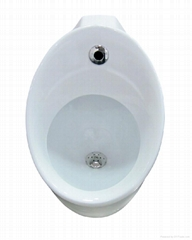 NEW 2012 KOHLER TOILET HUNG URINAL WITH