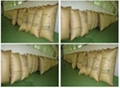 Inflatable Air Bag, Dunnage Air Bag, Container Pillow 1