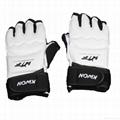 Taekwondo Gloves WTF Approved Hand