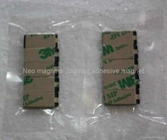 Adhesive neo  magnet